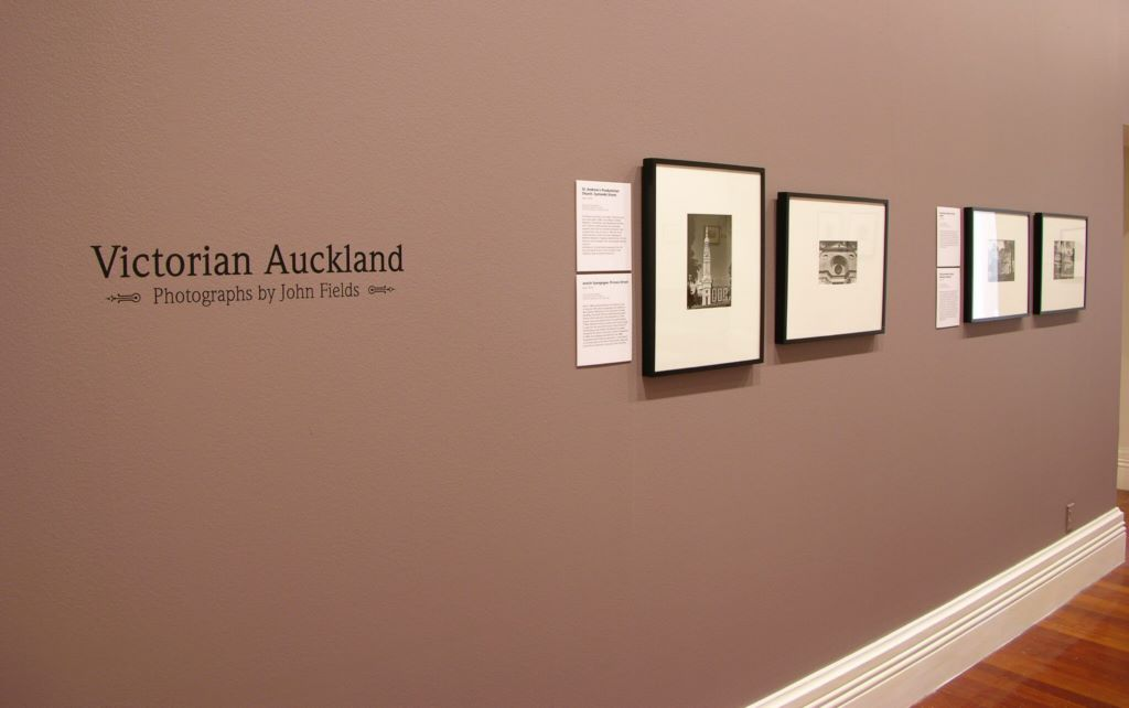 Victorian Auckland: Photographs by John Fields