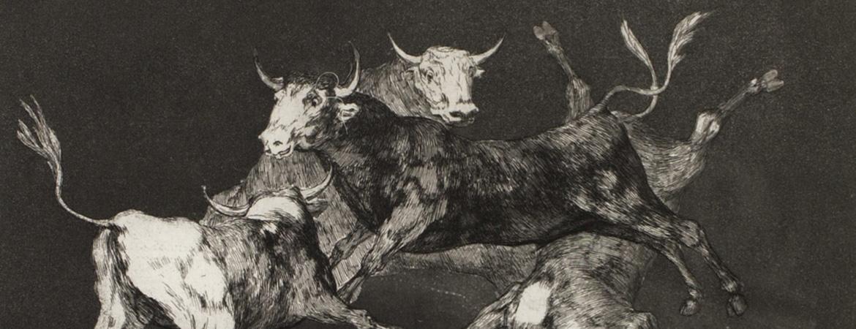 Goya: Folly and War
