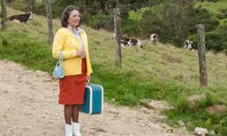 Latin America and Spain Film Festival: Sophia and the Stubborn (2012)