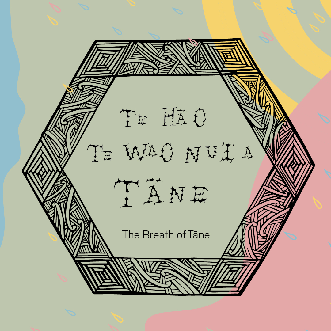 New family-friendly, interactive exhibition, Te Hā o Te Wao Nui a Tāne (The Breath of Tāne), opens at Auckland Art Gallery this summer  Image