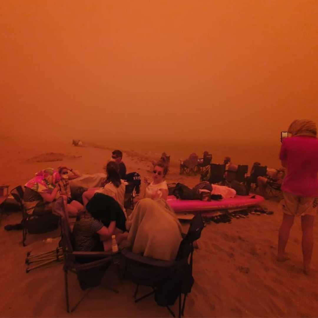 Climate catastrophe explored in performance art  at Auckland Art Gallery Toi o Tāmaki Image