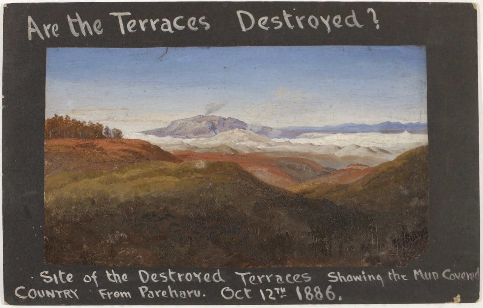 http://rfacdn.nz/artgallery/assets/media/blog-terraces-destroyed-2.jpg