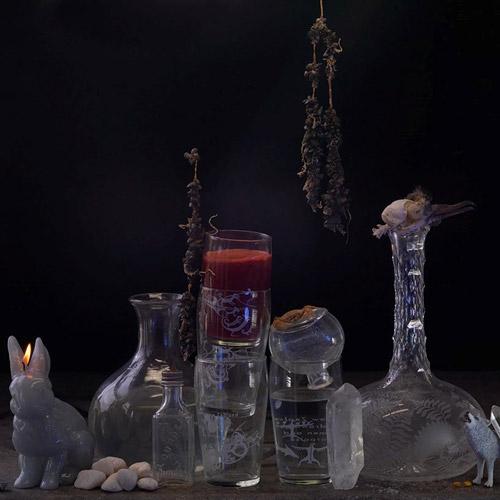 Fiona Pardington: Still Life with Mussel Spat... Image