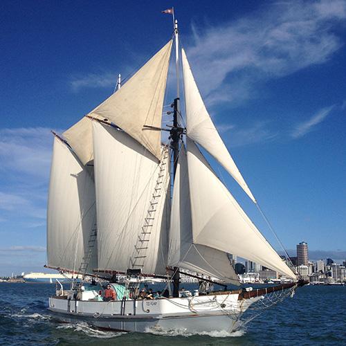 New Zealand Maritime Museum Image