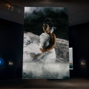 Auckland Art Gallery Toi o Tāmaki takes Māori art to the world with release of new virtual tour in English, simplified Chinese and te reo Māori Image