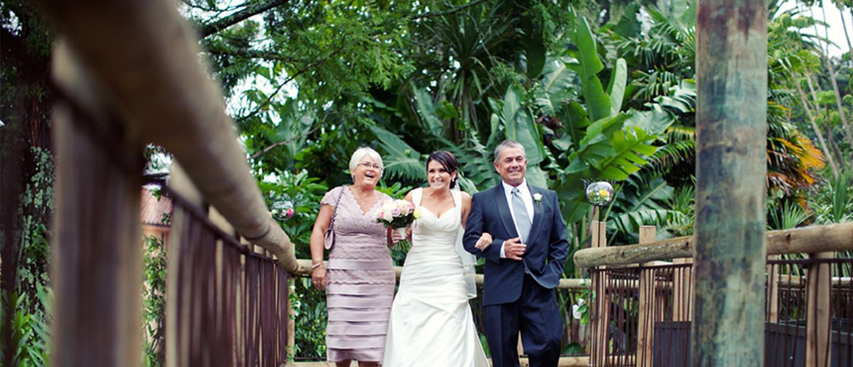 https://rfacdn.nz/conventions/assets/media/auckland-zoo-cotton-top-tamarin-shelter-wedding.jpg