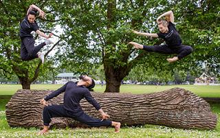 Auckland Live Pick & Mix: The NZ Dance Company