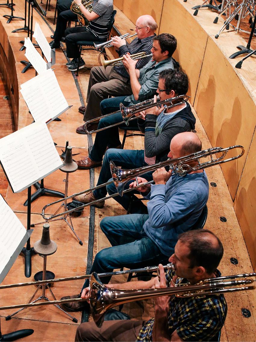 <p>Auckland Philharmonia Orchestra</p>
