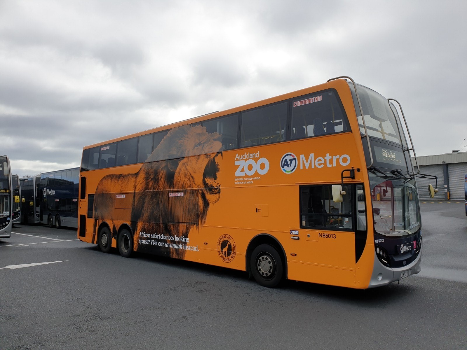 https://rfacdn.nz/zoo/assets/media/auckland-zoo-branded-at-bus.jpg
