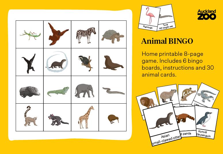 https://rfacdn.nz/zoo/assets/media/azoo-animal-bingo-social-media-alternative-12.jpg