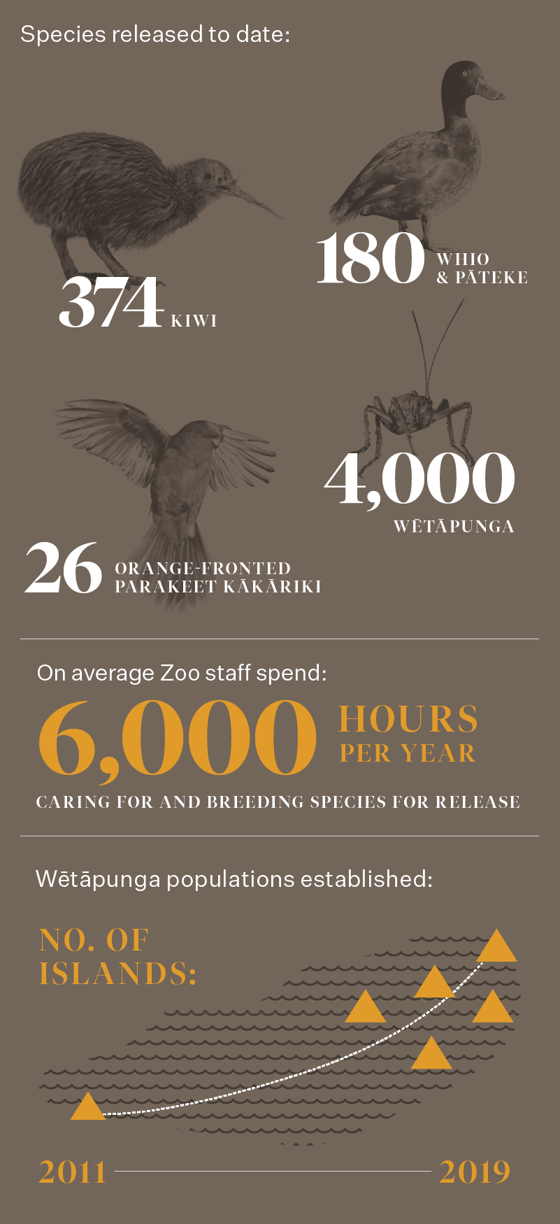 https://rfacdn.nz/zoo/assets/media/azoo-wildwork-centre-infograph-web-4.png