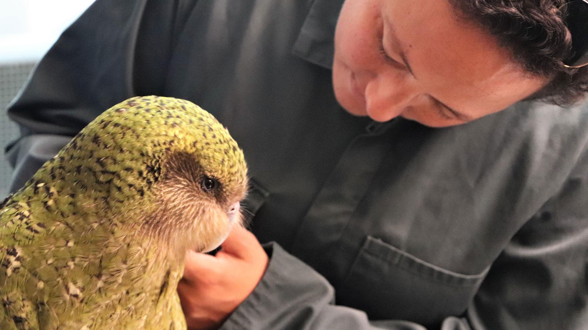https://rfacdn.nz/zoo/assets/media/conservation-minister-gallery-3.jpg