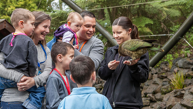 https://rfacdn.nz/zoo/assets/media/fotz-family-kea-rectangle.jpg