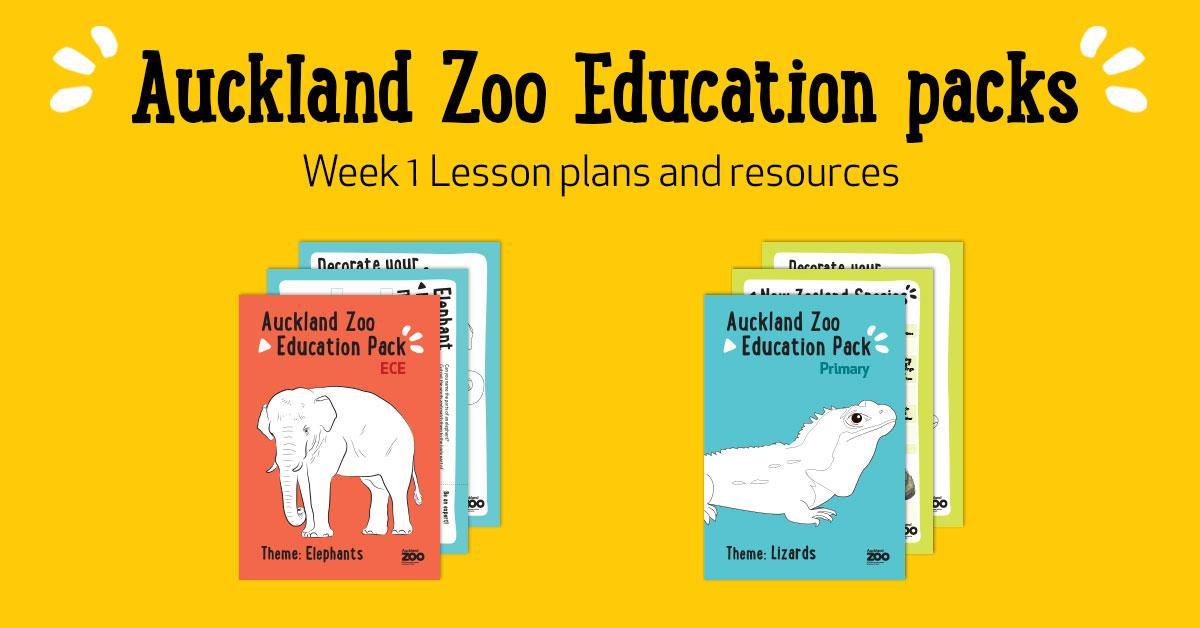 https://rfacdn.nz/zoo/assets/media/lesson-12.jpg