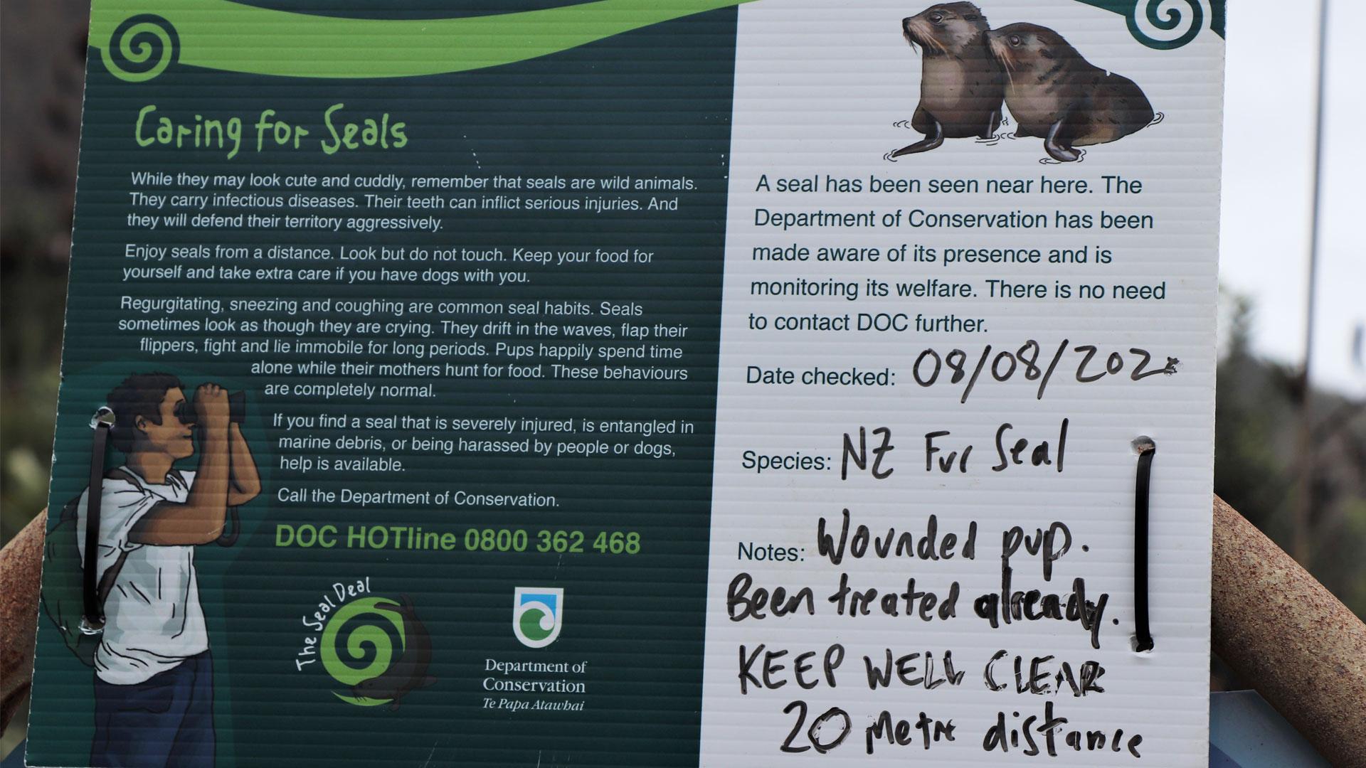 https://rfacdn.nz/zoo/assets/media/nz-fur-seal-gallery-9.jpg
