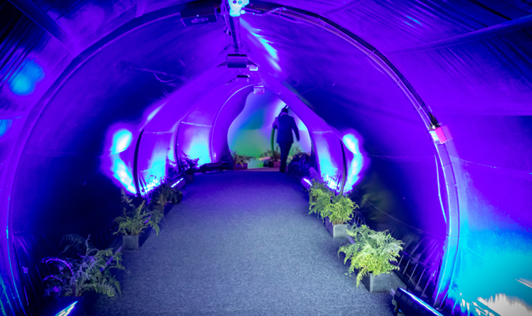 https://rfacdn.nz/zoo/assets/media/the-domes-tunnel-gallery-2.jpg