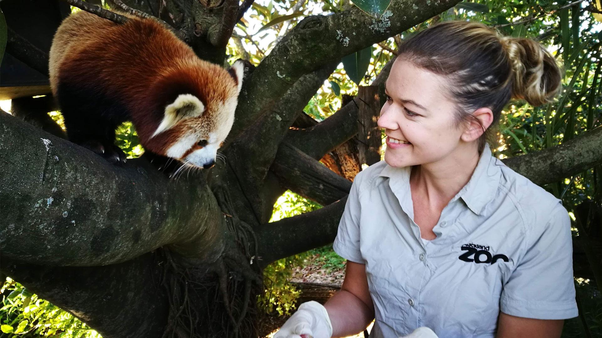 https://rfacdn.nz/zoo/assets/media/vet-nurse-awareness-week-gallery-6.jpg