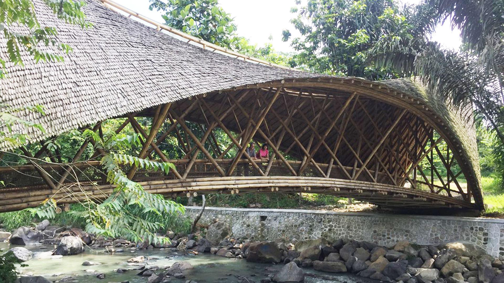 https://rfacdn.nz/zoo/assets/media/volunteers-in-sumatra-gallery-5.jpg