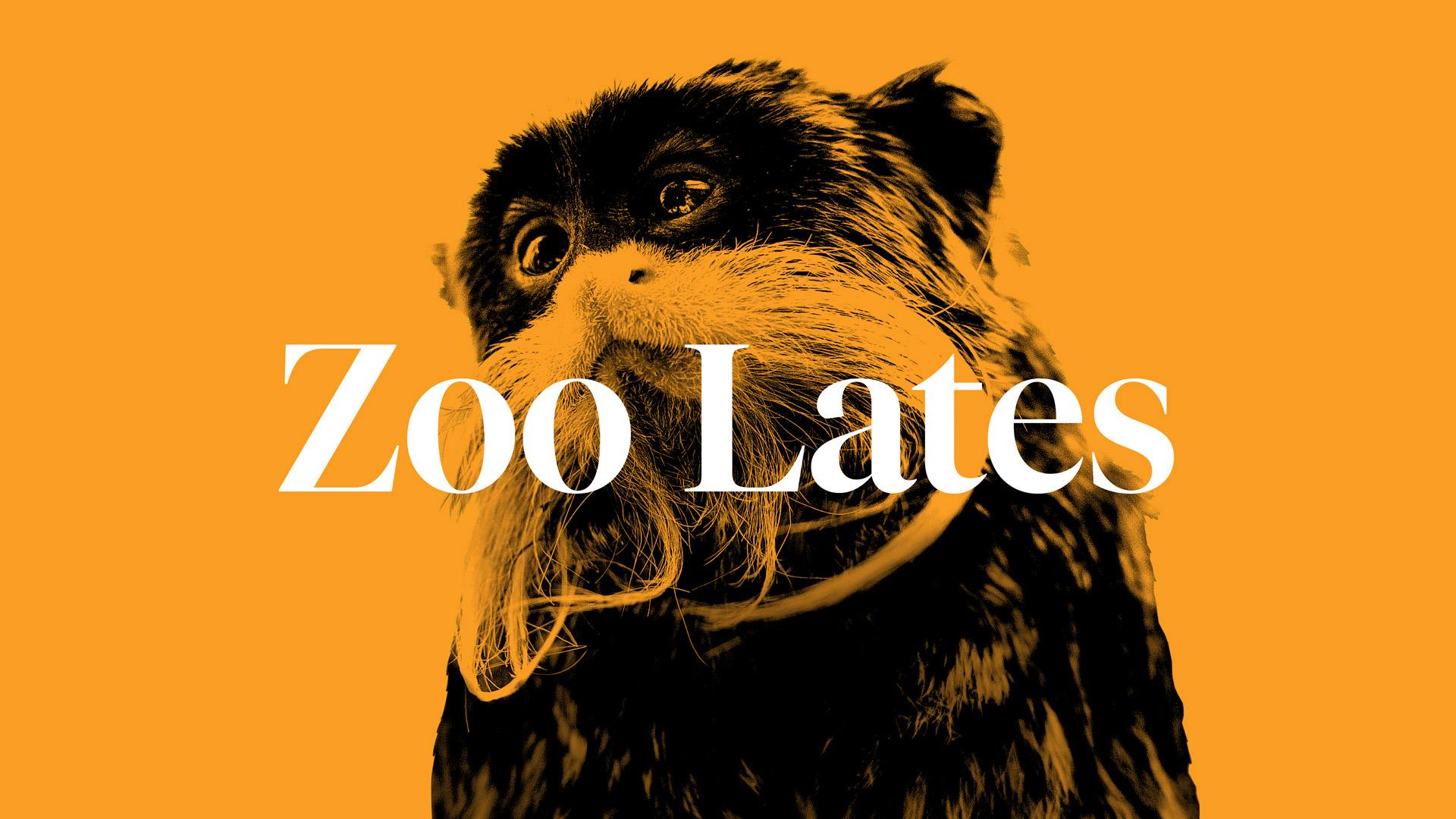 https://rfacdn.nz/zoo/assets/media/zoo-lates-homepage.jpg
